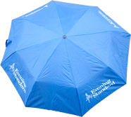 London evening standard umbrella