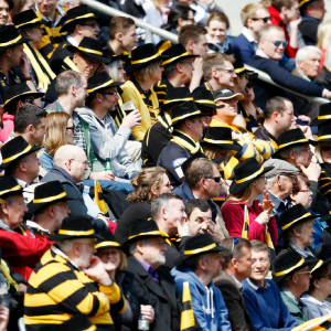 Wasps hats